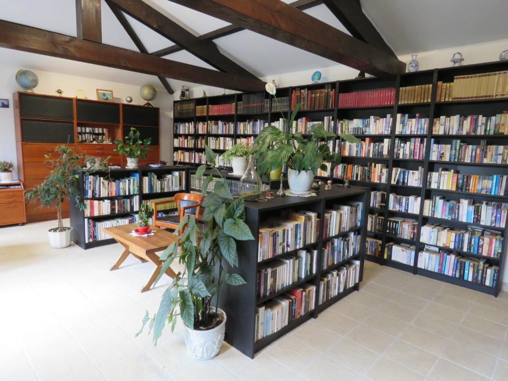 1 la biblioth+¿que (1)